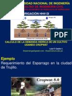 Demanda Hídrica de Un Cultivo Usando Croptwat