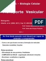 Bio 111 Transport e Vesicular 20151 A