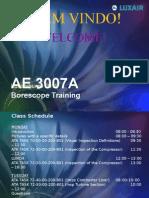 AE 3007A Borescope Training