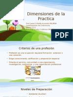 Dimensiones de la Practica.pptx