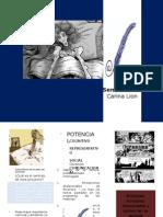Proyecto Múltiples Formatos Potencian La Lectura