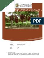 informe n° 2 UNIDADES AGFROPECUARIAS