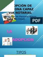 Adopción de Persona Capaz