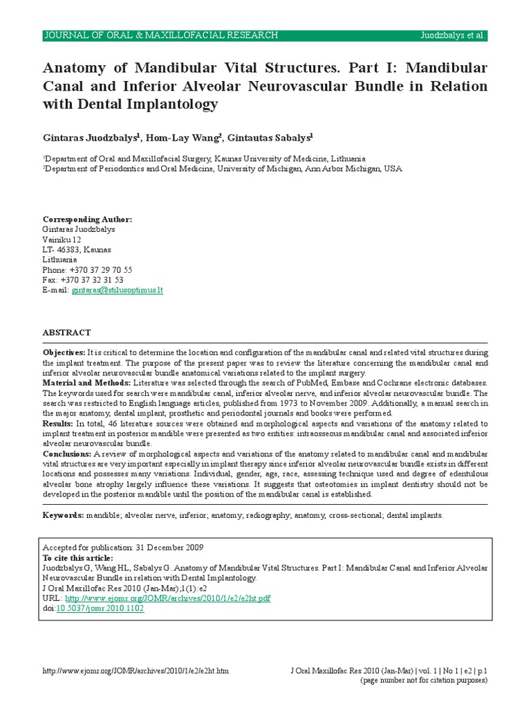Anatomy of Mandibular Vital Structures | Anatomical Terms Of ...