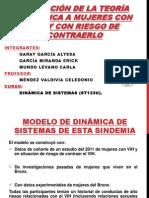 Aplicación de La Teoría Sindemica a Mujeres Con VIH Ppt