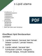 Jenis-jenis Lipid Utama
