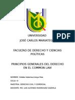 Principios Del Common Law