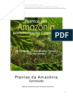 Oleos Essenciais Da Amazonia