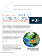 Ciclo de Carbono Oceanico