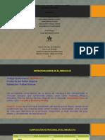 Evidencia 1. Características de Los Productos Y Servicios de La Oferta