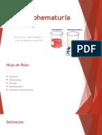 Micro Hematuria