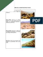 Reserve de La Vegetacion de Chile