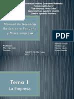 Manual Gerencia Basica Pequena y Micro Empresa