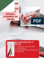 Hemograma, Reactantes de Fase Aguda, Examen