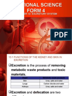 Addsc Excretory