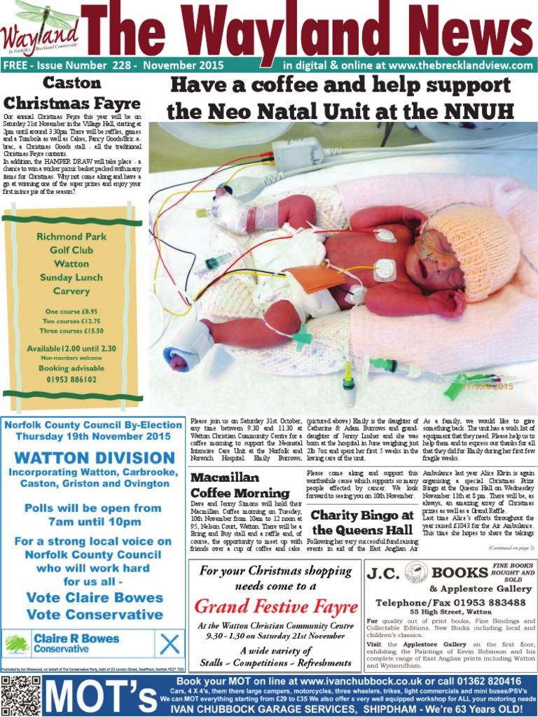 807fed33a The Wayland News November 2015 | Influenza Vaccine | Influenza
