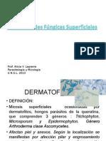 Enfermedades Fungicas Superficiales Lapierre1