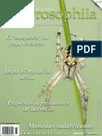 Numero15 Drosophila