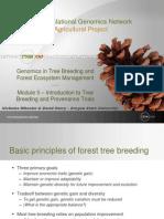 Tree Breeding