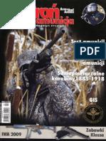Bron i Amunicja 2009-02