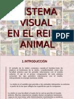 SISTEMA VISUAL DEFINITIVO.pps