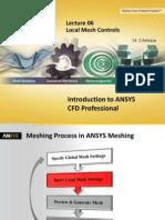 CFD Pro 14.5 L06 Local Mesh Controls