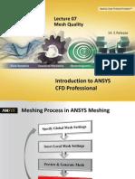CFD Pro 14.5 L07 Mesh Quality