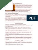 catembe_escolas_sem_carteiras.doc