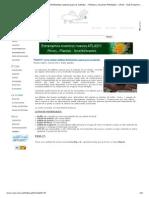 _NUEVO_ Como Realizar Tabletas Fertilizantes Caseras Para El Sustrato