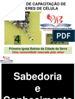 Curso de Capacitação de Líderes IV 2014