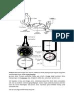 Kompas dan Penggunaan.docx