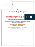 rafi final report.doc
