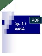2_2_Sunetul