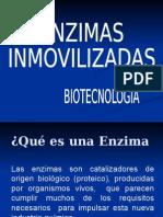 ppt. ENZIMAS INMOVILIZADAS
