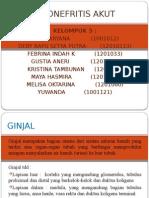Ppt Pielonefritis Kel 5 A