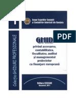 Ghid Privind Acces Contab Fisc Audit Si Managementul Proiectelor Cu Finant Europeana OCR