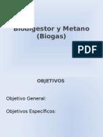 Biodigestor y Metano Biogas