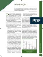 Taierea pomilor fructiferi.pdf