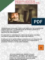 Alteraciones Genéticas Inducidas Por La Contaminación ppt