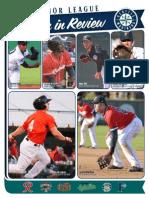 2015 MiLB Season in Review.pdf