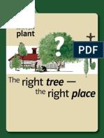 Plan B4U Plant