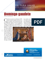 Domingo Gaudete