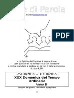 sdp_2015_30ordin-b.doc