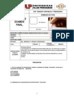 Modelo Examen Final