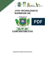 Instituto Tecnológico Superior de Coatzacoalcos