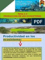 2.3 Producción en Los Ecosistemas