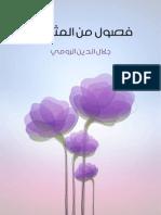 فصول_من_المثنوي.pdf