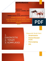 Dengue Haemoragic Fever