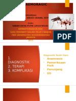 Dengue Haemoragic Fever