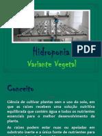 VV4 Hidroponia